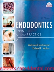 Endodontics: Principles and Practice, 4th Edition (pdf)